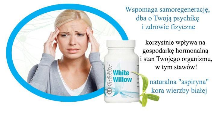 niesteroidowe leki nlpz