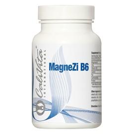 MagneZi B6