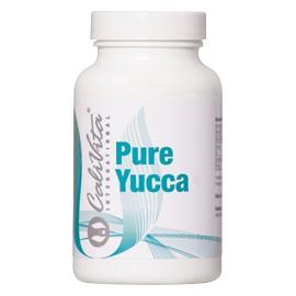 Pure Yucca